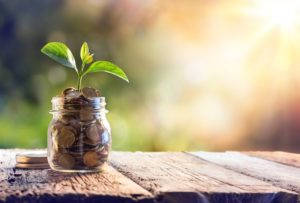 Investing Boils Down to Two Basic Options